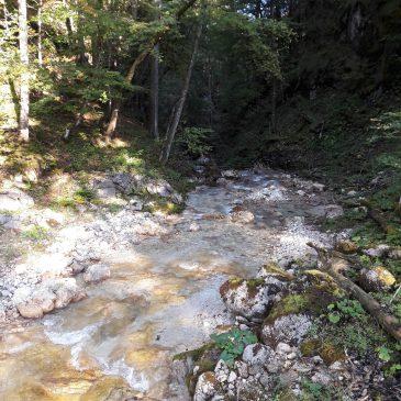 Sababach – Canyoning Schluchtenführer