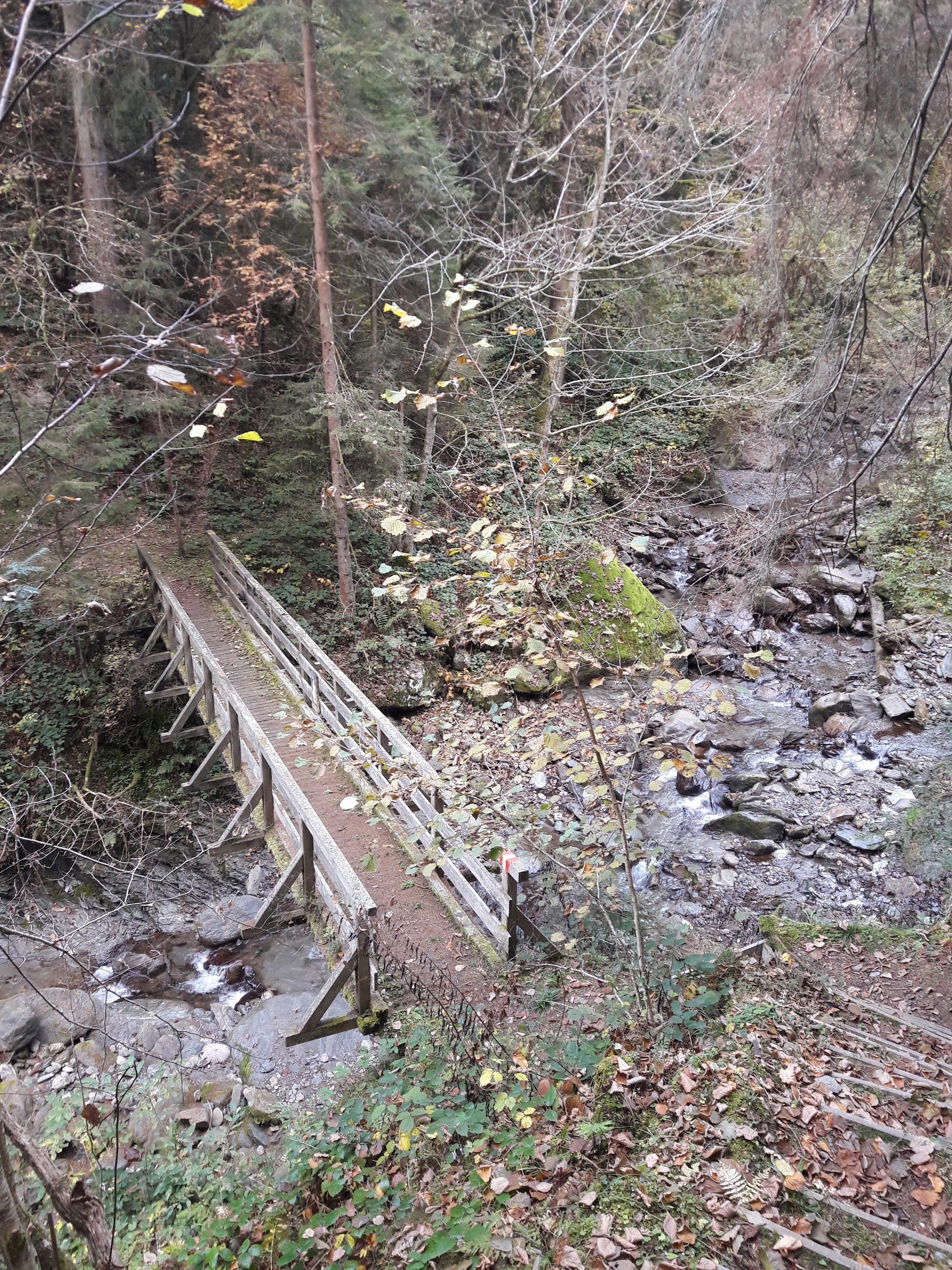 Brücke am Weg Himmelsstiege